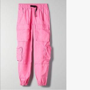 """Aritzia """"overload cargo pants"""""""